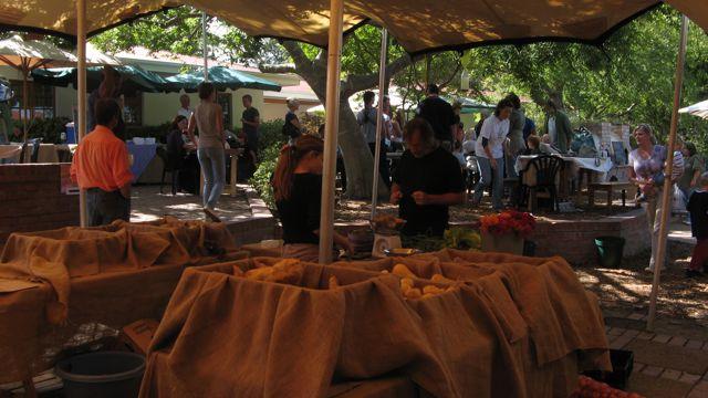 stellenbosch-organic-farmers-market3