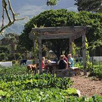 garden-chat