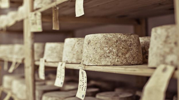 Healey's Cheesery and Deli
