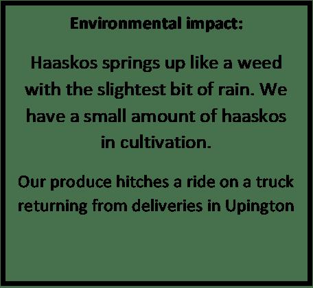 Haaskos environmental
