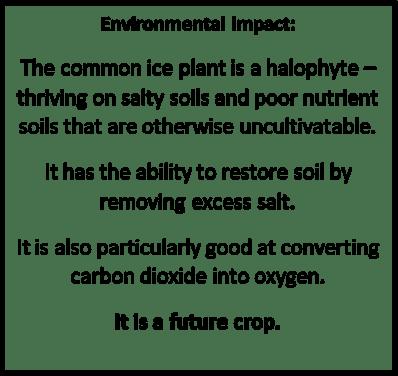 ICE PLANT ENVIRONMENTAL