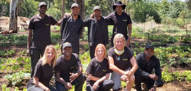 cropped Green Earth South Africa organic training banner