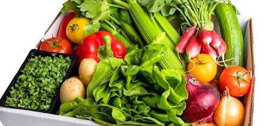 cropped The Organic Vegan organic grocer banner
