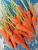 Carrots (1 kg)